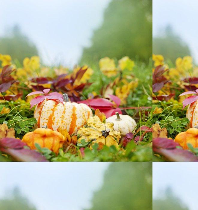 Tapeta Pixerstick Dýně a podzimní listí v trávě - zátiší - Roční období