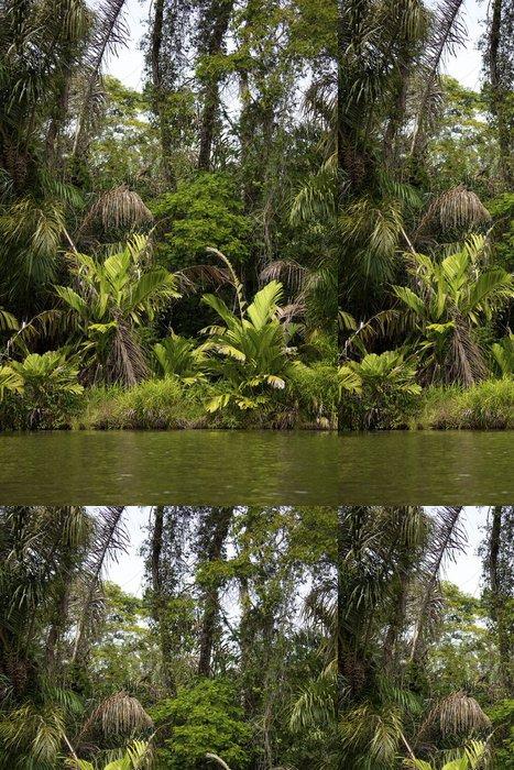 Tapeta Pixerstick Džungle z Tortuguero řeky v Kostarice - Témata