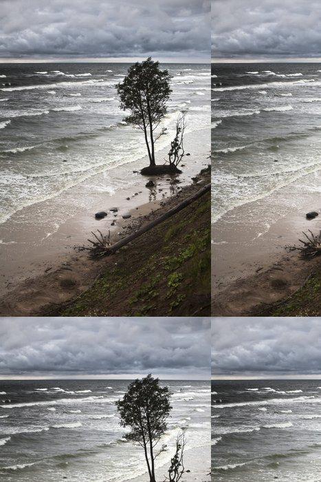 Tapeta Pixerstick Eroze pobřeží Baltského moře v důsledku bouří a změny klimatu - Přírodní katastrofy