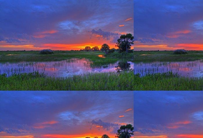 Vinylová Tapeta Everglades západ slunce - Amerika