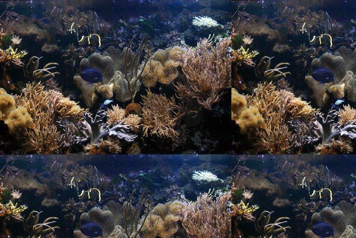 Tapeta Pixerstick Exotické ryby nádrž 02 - Vodní a mořský život