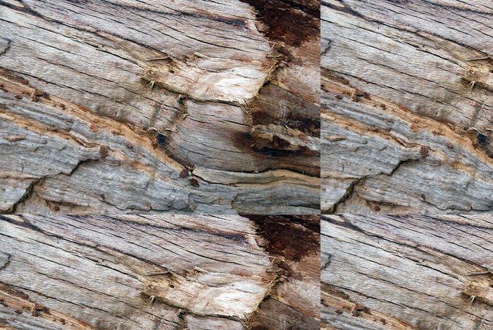 Tapeta Pixerstick Fallen dubové dřevo textury - Přírodní krásy