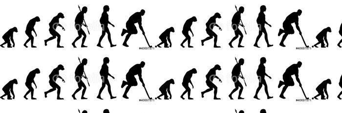 Tapeta Pixerstick Feldhockey Evolution - Týmové sporty
