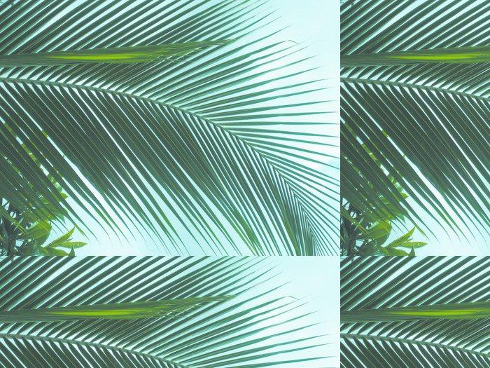 Tapeta Pixerstick Feuille de palmier sur fond de ciel - Stromy