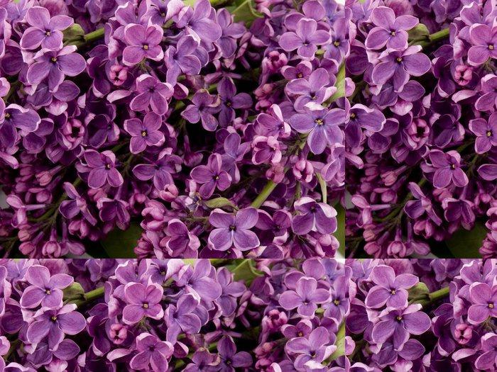 Vinylová Tapeta Fialová lila - Květiny