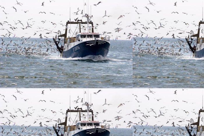 Tapeta Pixerstick Fischerboot und möwen - Evropa