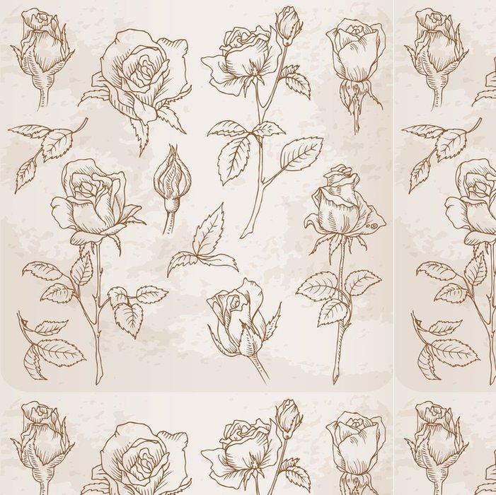 Tapeta Pixerstick Flower Set: Podrobný Ručně malovaná růže ve vektoru - Slavnosti
