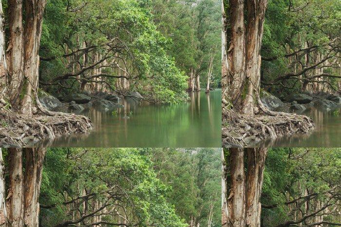 Tapeta Pixerstick Forest Lake odrážejí stromy v Hongkongu - Voda