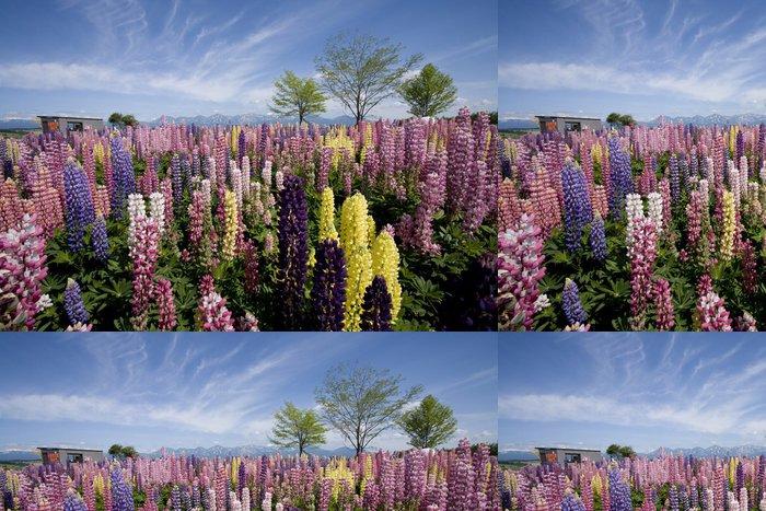Vinylová Tapeta Four Seasons barva の Confucius - Nebe