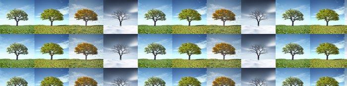 Tapeta Pixerstick Four Seasons Tree - Roční období