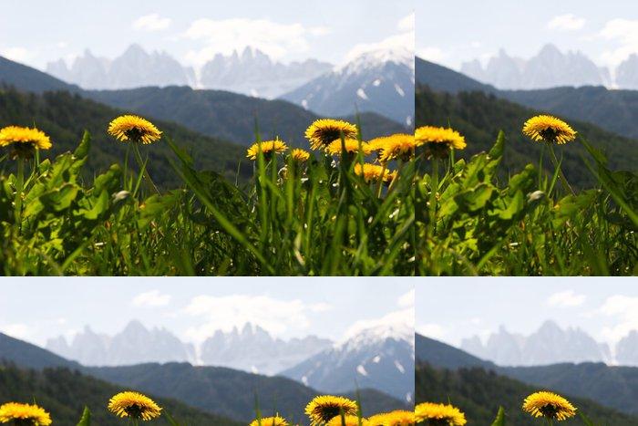 Tapeta Pixerstick Frühling in den Alpen - Roční období