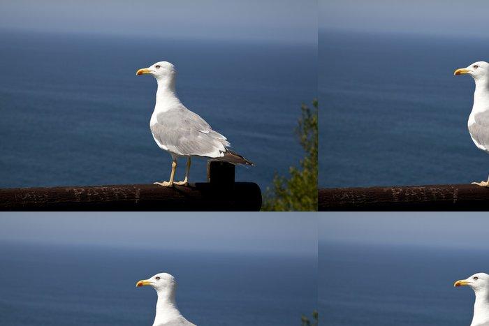 Tapeta Pixerstick Gaviota posada Frente al mar - Ptáci