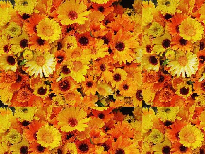 Tapeta Pixerstick Gerbery pomerančový žlutých - Květiny