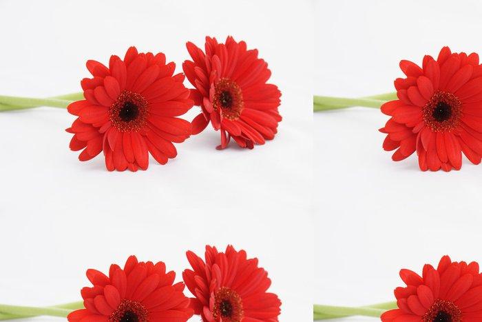 Vinylová Tapeta Gerbery rouge - Květiny