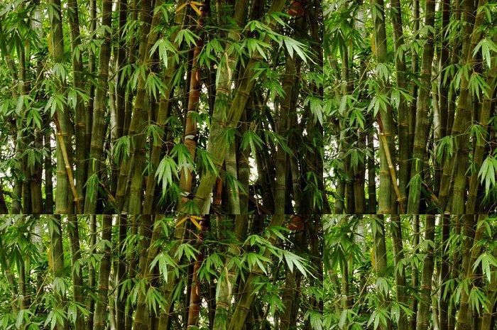 Tapeta Pixerstick Giant bamboo shoot - Přírodní krásy