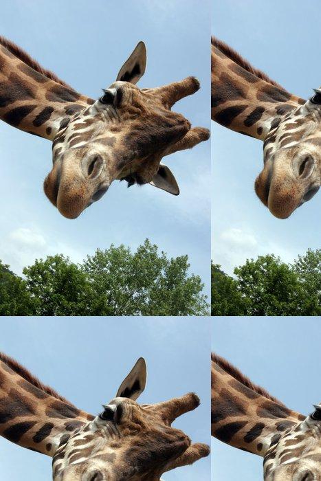 Tapeta Pixerstick Giraffa - Témata