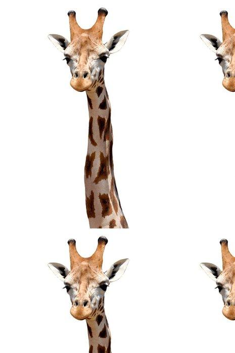 Tapeta Pixerstick Giraffe izolovaný - Savci