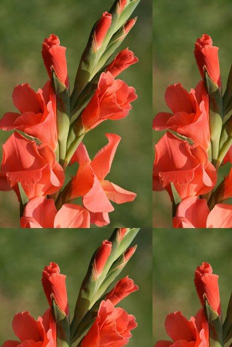 Tapeta Pixerstick Gladiola - Květiny