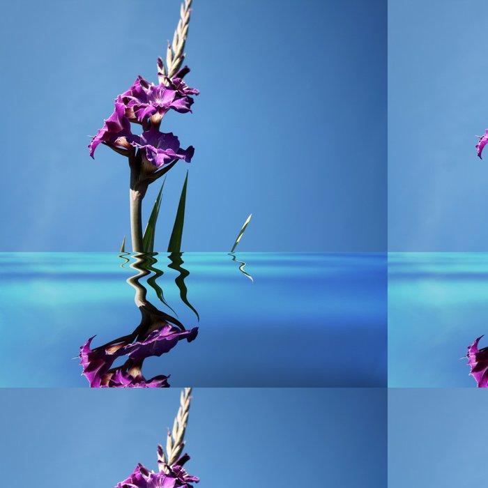 Tapeta Pixerstick Gladiolen im Wasser - Květiny