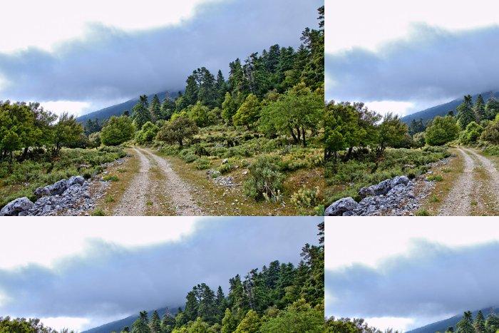 Tapeta Pixerstick Grèce; ioniennes, kefalonia: mont Enos, Sentier de Montagne - Evropa