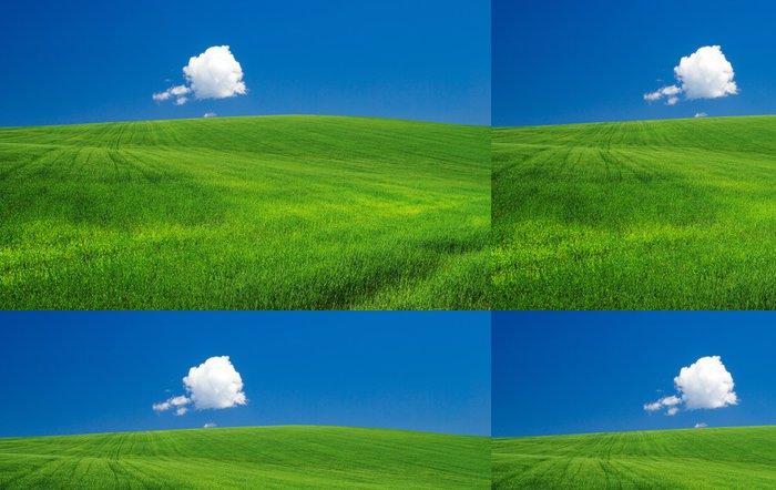 Tapeta Pixerstick Green field - Nebe