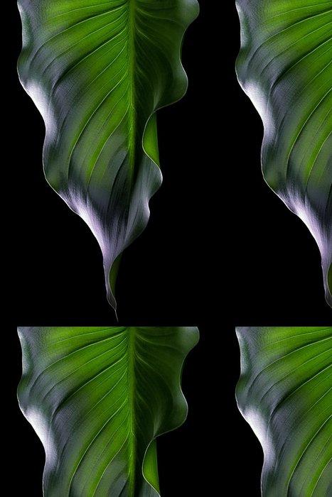 Tapeta Pixerstick Green Leaf. Spa okolí - Životní styl, péče o tělo a krása