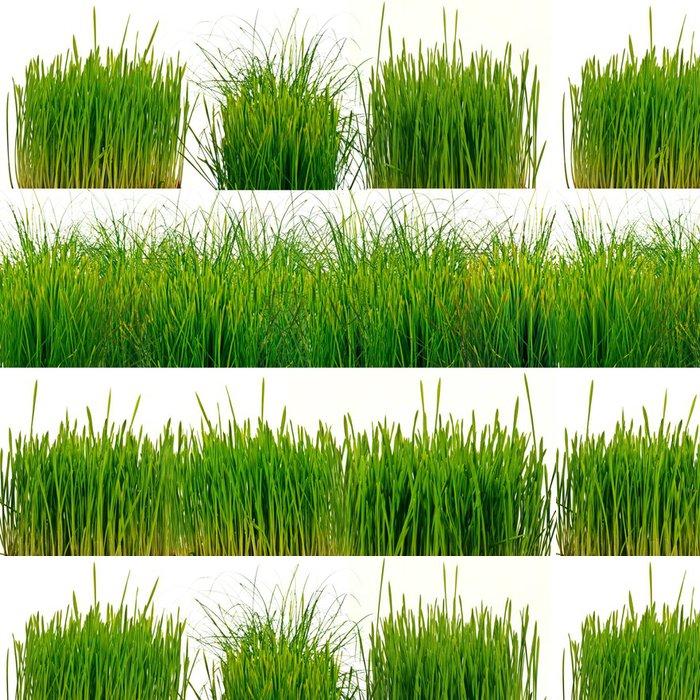 Tapeta Pixerstick Grünes Gras, freigestellt vor bílém pozadí - Mezinárodní svátky