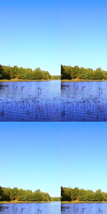Tapeta Pixerstick Haynes u jezera Tishomingo národního parku - Mississippi - Amerika