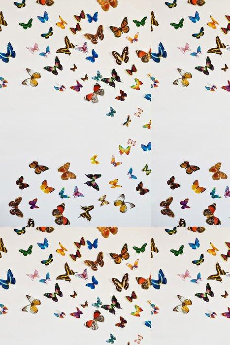 Vinylová Tapeta Hejno motýlů na šedém pozadí s prostorem pro váš text - Přírodní krásy