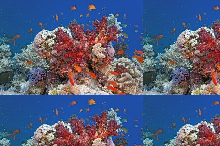 Tapeta Pixerstick Hejno ryb na korálový útes - Criteo