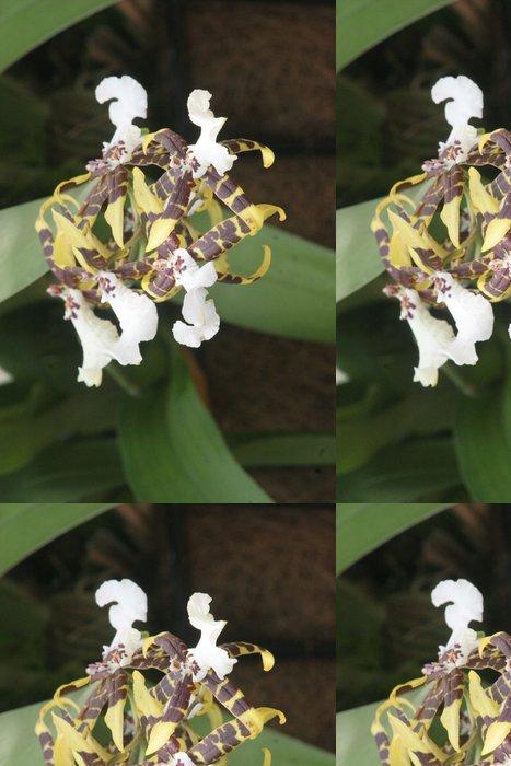 Tapeta Pixerstick Hnědé a žluté orchideje - Květiny