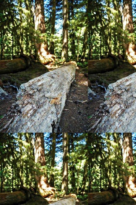 Tapeta Pixerstick Hnití log - Přírodní krásy