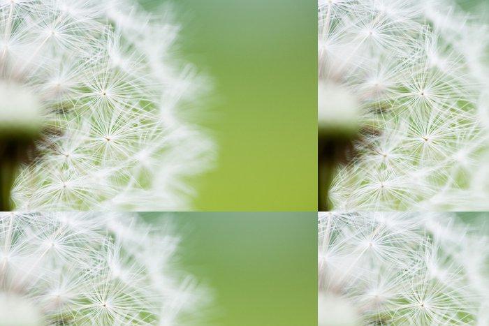 Vinylová Tapeta Hodiny Dandelion Seeds - Témata