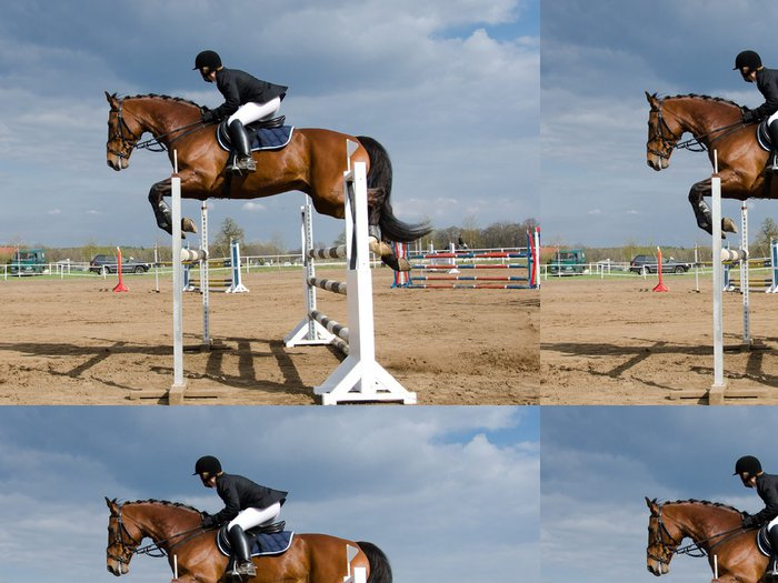 Tapeta Pixerstick Horse show skok - Individuální sporty