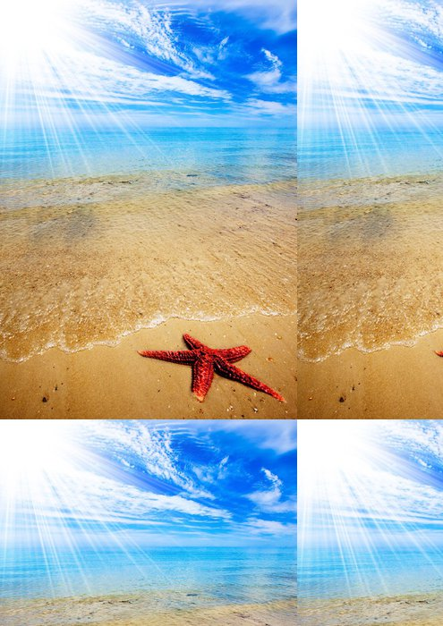 Vinylová Tapeta Hvězdice Beach - Voda