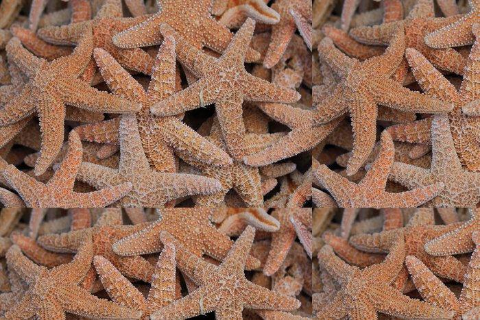 Tapeta Pixerstick Hvězdice - Prázdniny