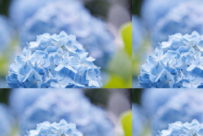 Tapeta Pixerstick Hydrangea - Květiny