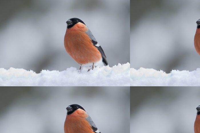 Tapeta Pixerstick Hýl ve sněhu - Roční období
