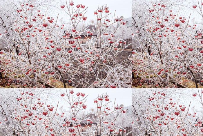 Tapeta Pixerstick Ice-vztahuje větve kalina - Roční období