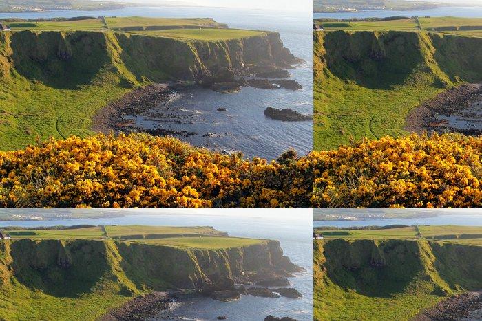 Vinylová Tapeta Irish pobřeží a žluté květované útesy - Evropa