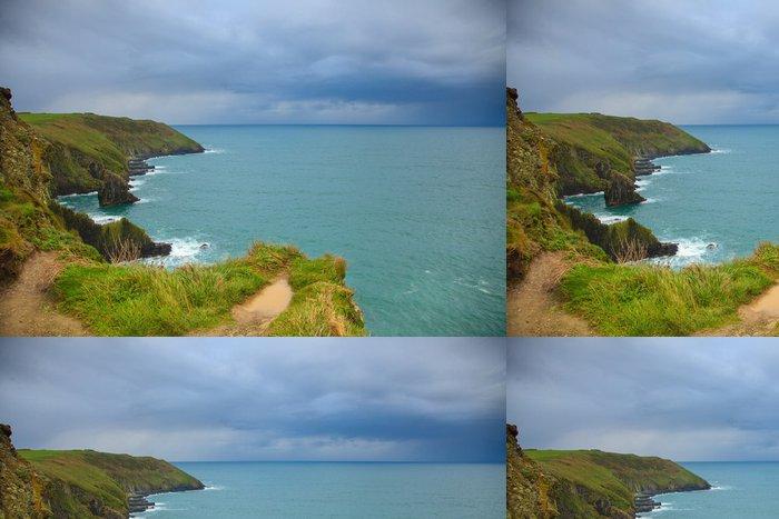 Tapeta Pixerstick Irská krajina. pobřeží Atlantského pobřeží County Cork, Ireland - Květiny