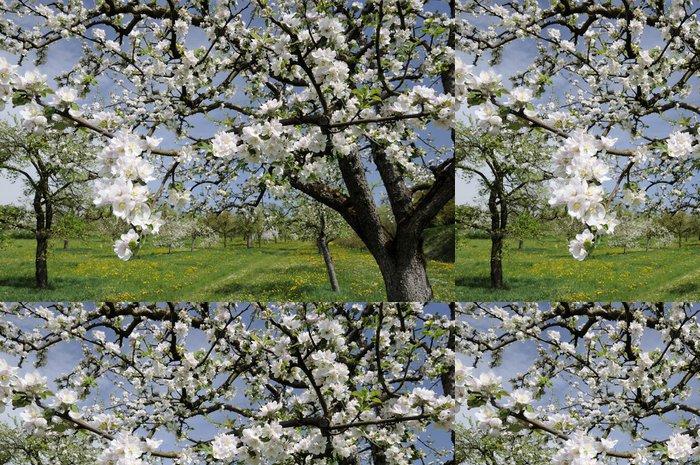 Tapeta Pixerstick Jablko květiny - Rostliny