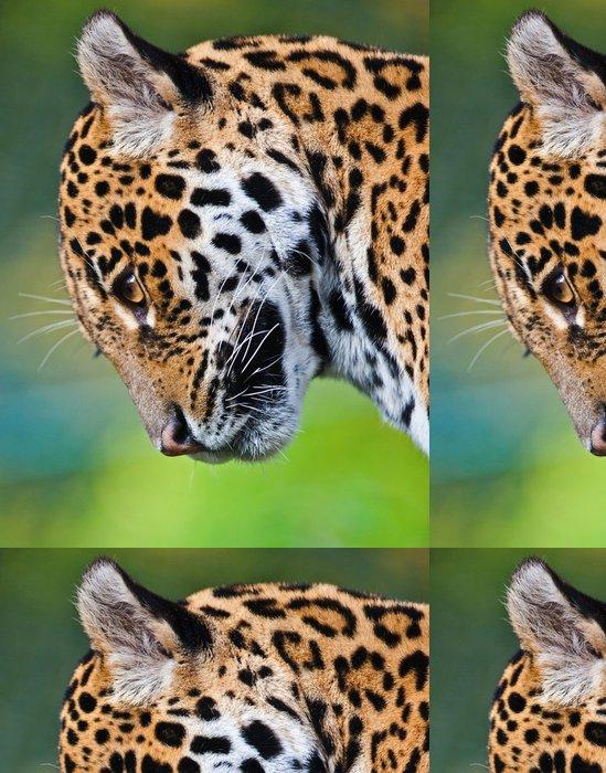 Tapeta Pixerstick Jaguar - Panthera onca - Savci