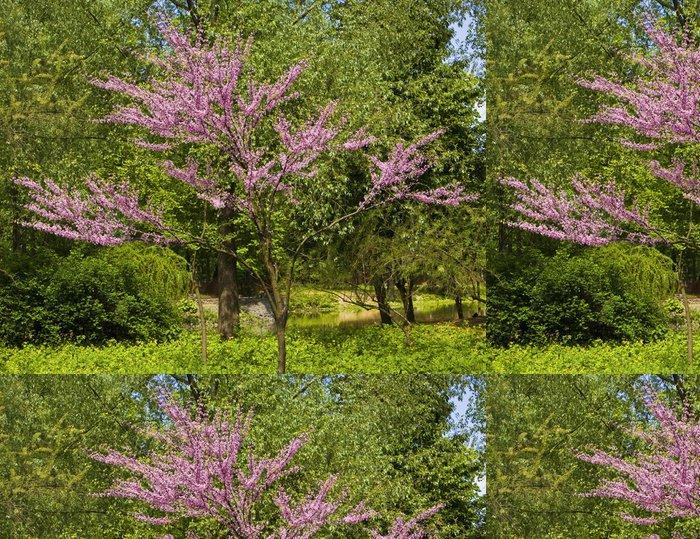 Tapeta Pixerstick Japonská třešeň v květu - Roční období