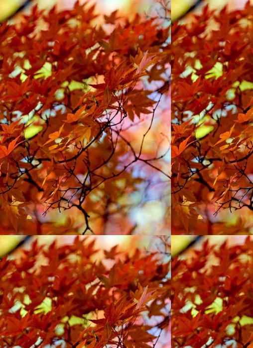 Tapeta Pixerstick Japonské javorové listy - Roční období