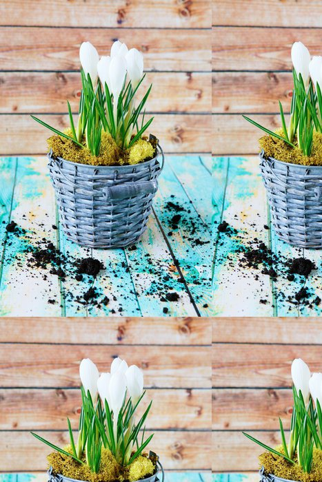 Tapeta Pixerstick Jarní květiny, bílý šafrán - Národní svátky