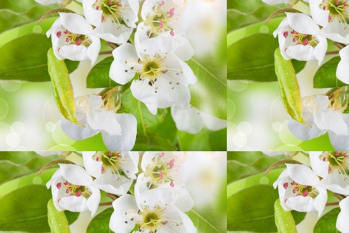 Vinylová Tapeta Jarní květy na pozadí - Imaginární zvířata