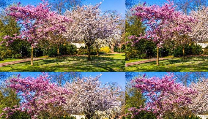 Tapeta Pixerstick Jarní příroda na pozadí. Jarní krajina - Roční období