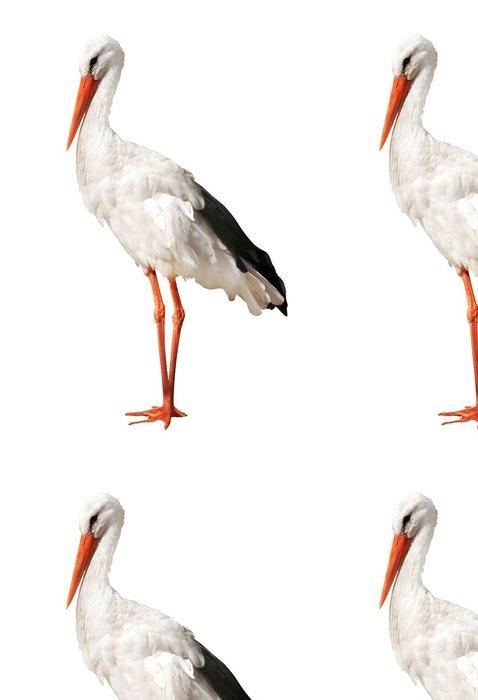 Vinylová Tapeta Jeden čáp izolovaných na bílém - Ptáci