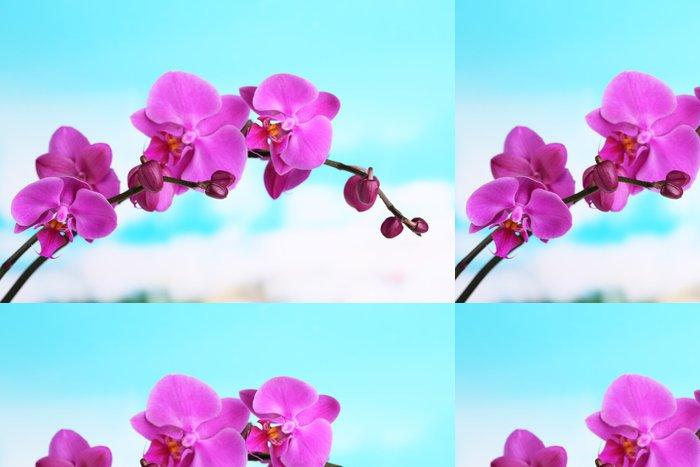 Tapeta Pixerstick Jemná krásná orchidej na přírodním pozadí - Květiny
